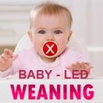 babyledweaning